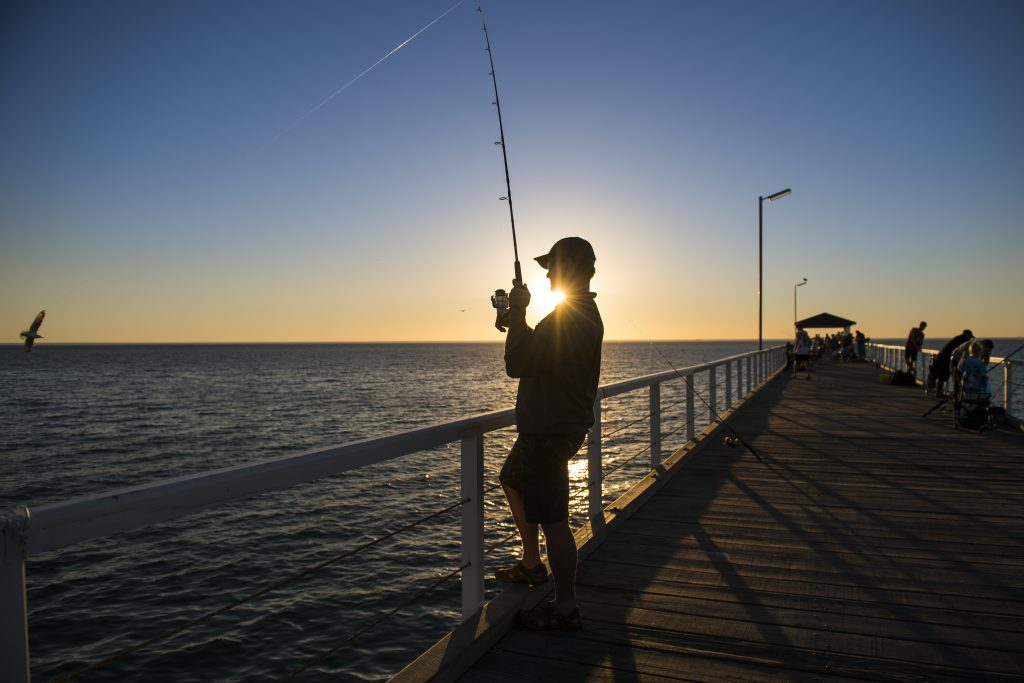 Pier Fishing in North Myrtle Beach this Fall